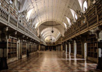 Mafra Palace & it's beautiful library...